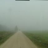 36_Tundub, et hommikune udu on päris tihe